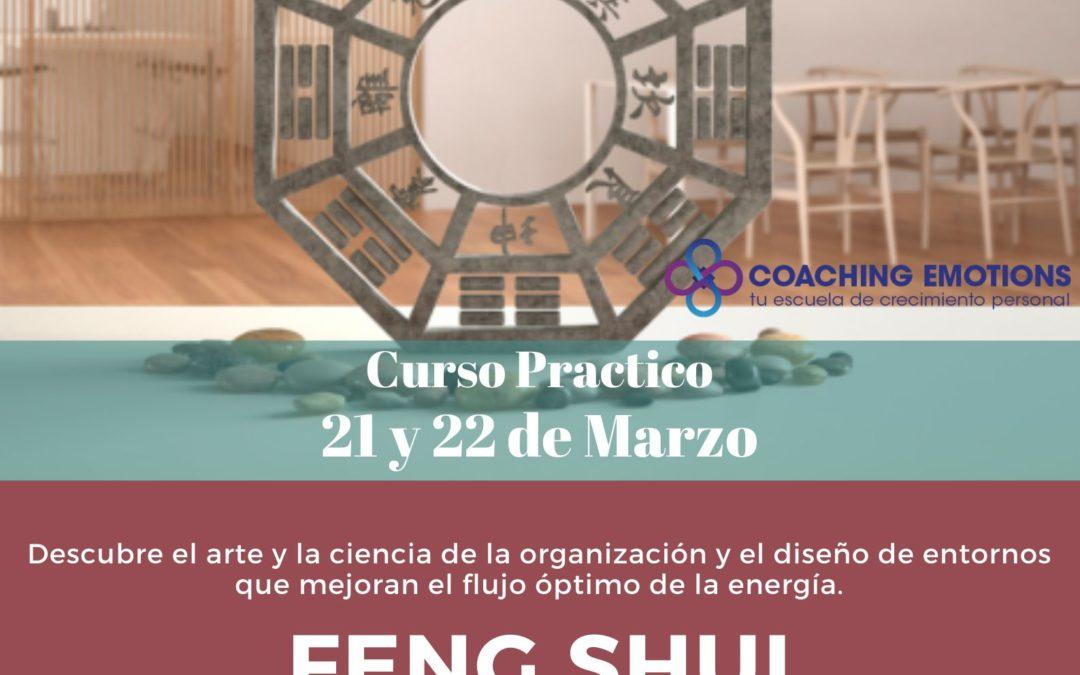 Curso Practico de Feng Shui (Novelda)
